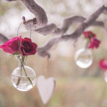 fleurs dans les arbres